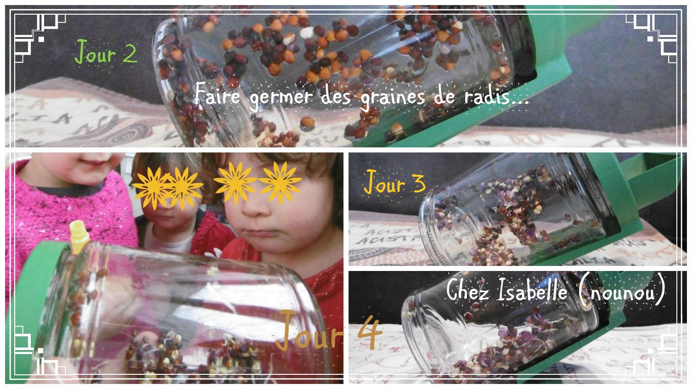 Jardinage - Faire germer des graines ...